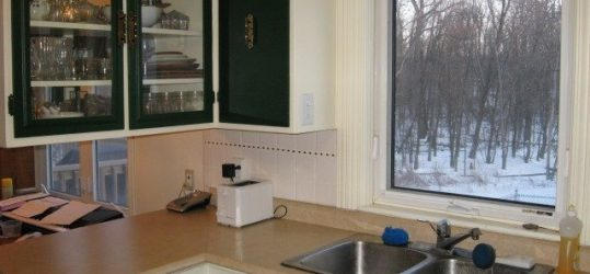 The Kitchen Remodel