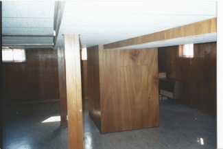 The Basement Renovation